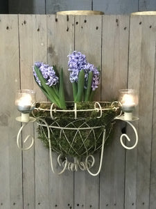 Candle Sconce planter