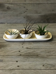 3 Bamboo Dipping bowls on Tray - White