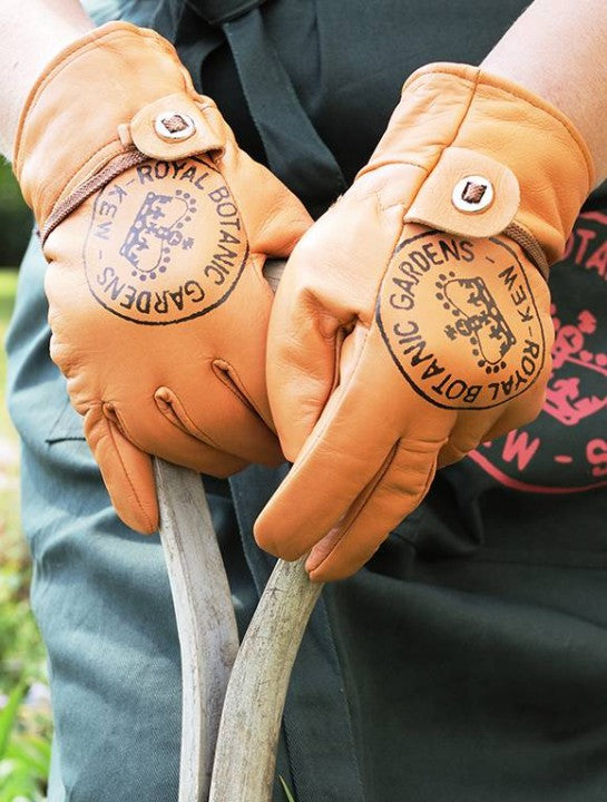 Kew Leather Gardening Gloves
