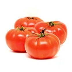 Large round and succulent juicy tomatoes, with thick flesh and packed with flavour. Originally from Peru they were imported into Europe in the 16th century, Despite the late entry into Europe its now a key element in most European cuisine.