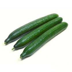 Cucumber sold by Spence hall