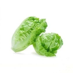 2 little gem Lettuces sold by Spence hall