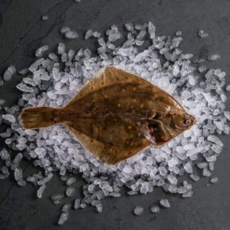 Whole Plaice on Ice Sold by Spence Hall