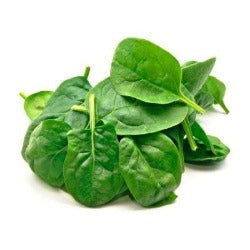 Bagged babyleaf spinach sold by Spence hall