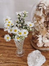 Load image into Gallery viewer, Everlasting Dried Flower glass Domes are filled with  dried wildflowers frame pressed flowers