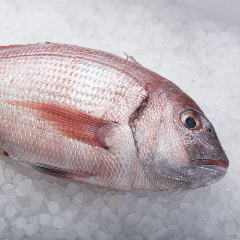 Whole Pink Bream