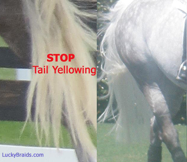 stop tail stains