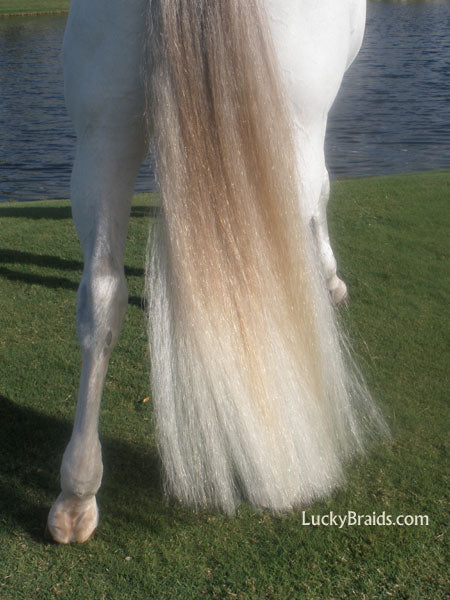 White Horse Tail