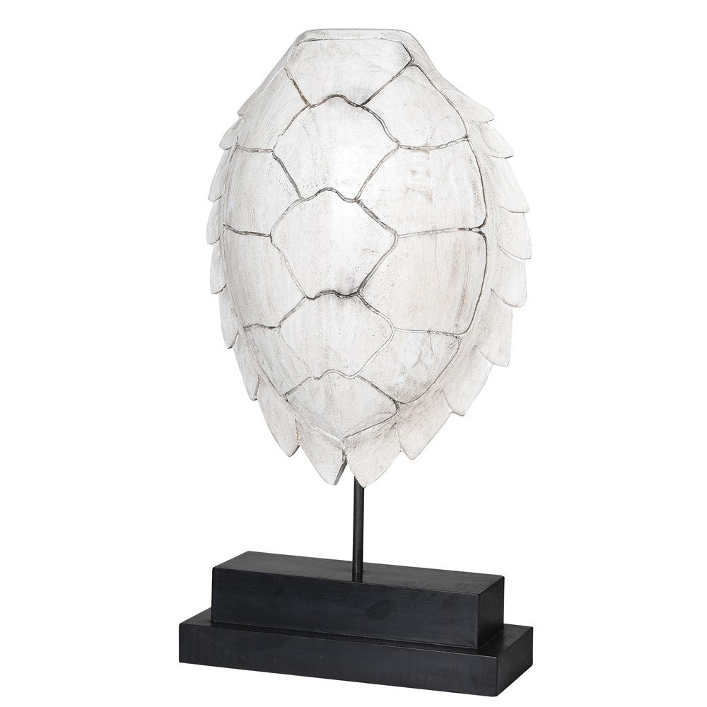 White Turtle Shell Sculpture