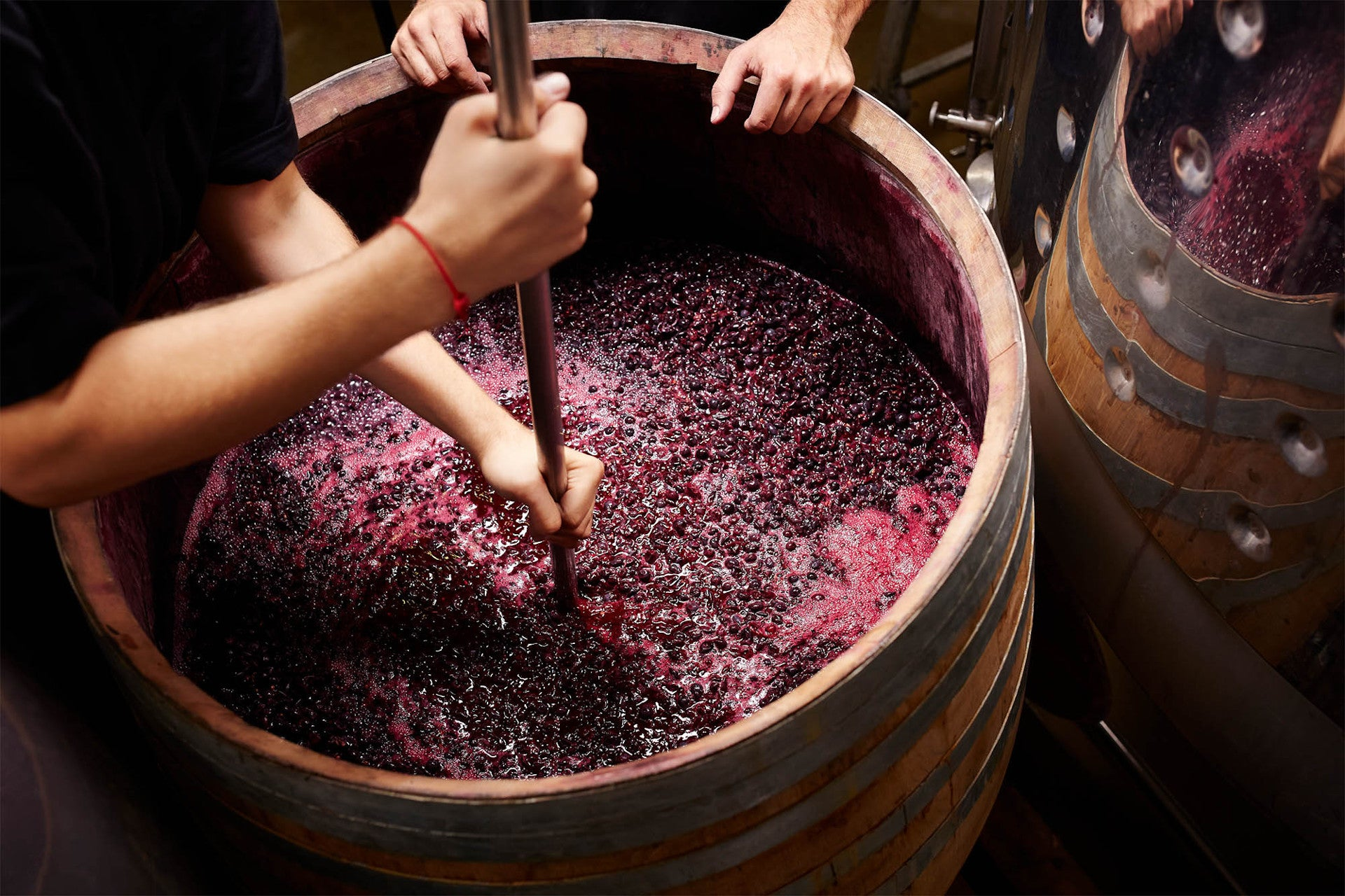 natural red wine grapes and juice in barrel