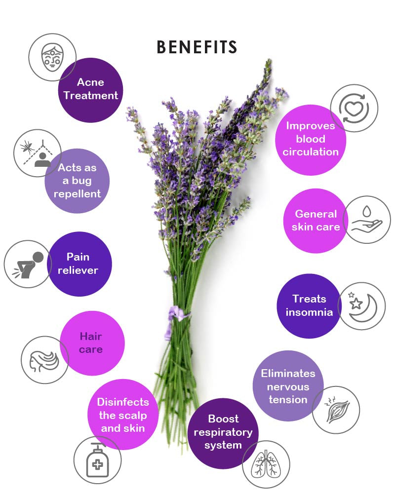 Yein&Young Lavender Essential Oil - 10ml