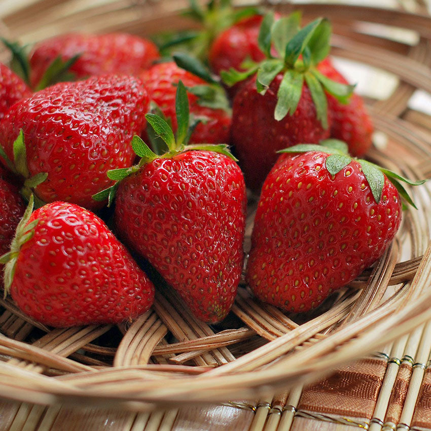 Strawberry - Fragrance Oil Ingredients - Craftiviti