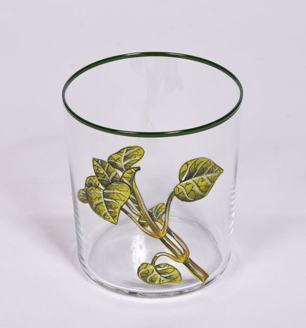 Set of 6 Hand Painted Herb Tumblers