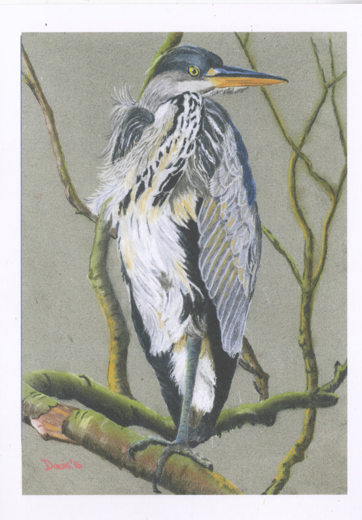 Grey Heron - The Art of Phil Davis