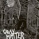 GRAY MATTER - food for thought LP