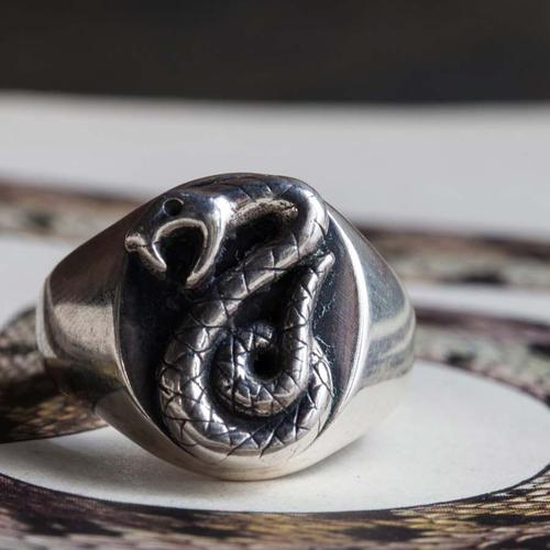 Discover the Story of the Harry Potter Slytherin Ring