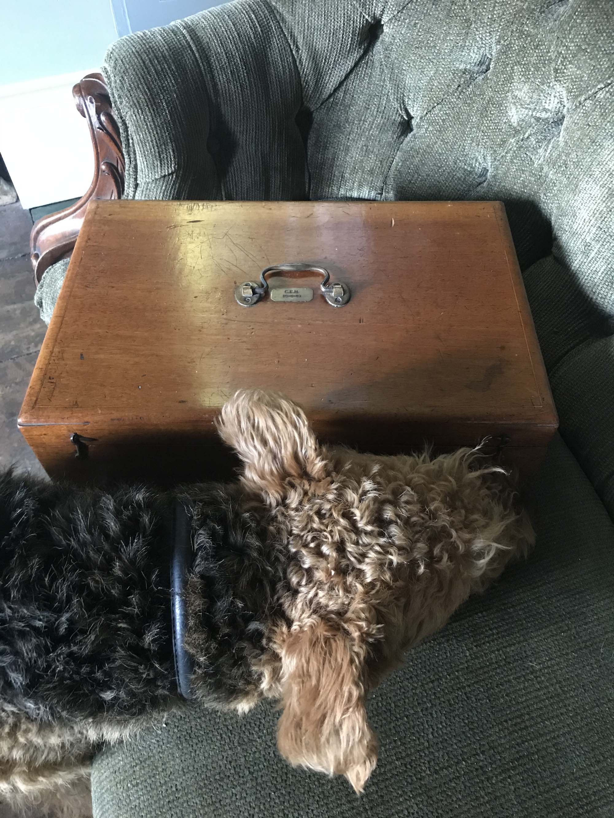 Catherine Hills vintage jewellery box and Rolo