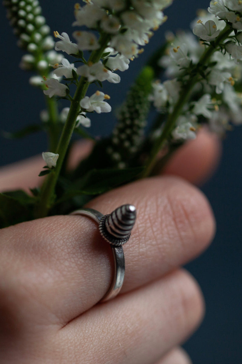 Pointed Pupa Stacking Ring