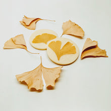 Load image into Gallery viewer, Ginger Ginkgo Bath Melt