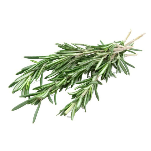 Fresh Rosemary  - (1oz. bunch)