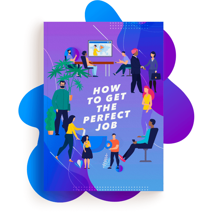 How To Get A Perfect Job Ebook