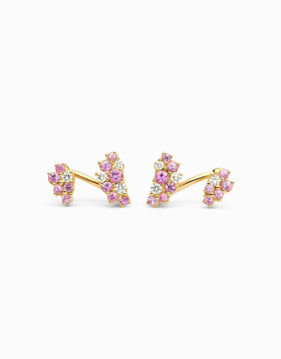 Pendientes Double Bunch · Rose