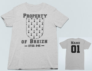 Property of Breizh Personalized T Shirt, Athletic Style Brittany Patriot Heathered Shirt, Breton Pride Sporty Unisex Tee - Alba Forged