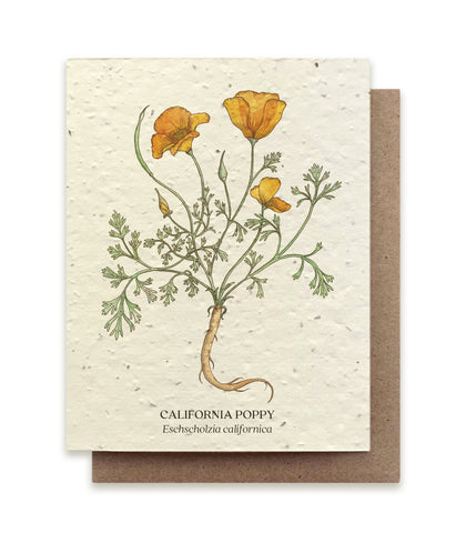 California Poppy Greeting Cards