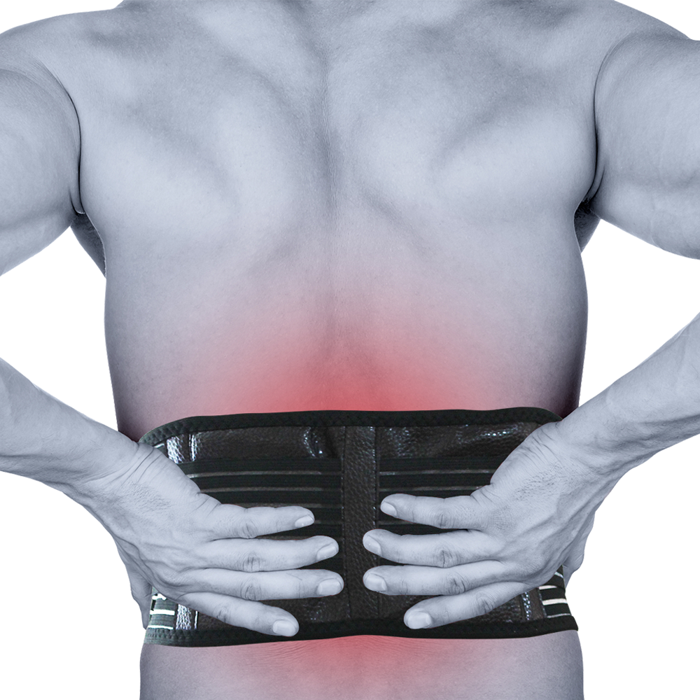 Self Heating Magnetic Back Pain Support, Medical Equipment by Direct Savings Online