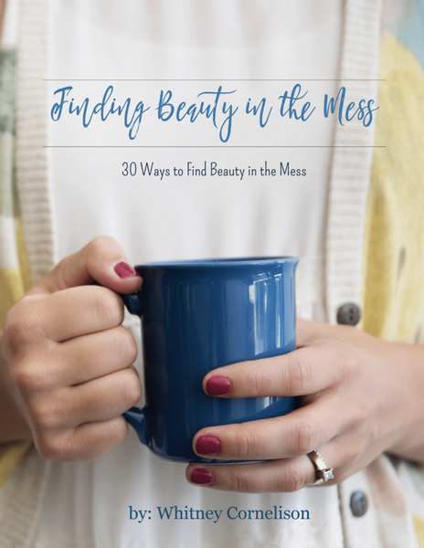 30 Ways to Find Beauty in the Mess Journal