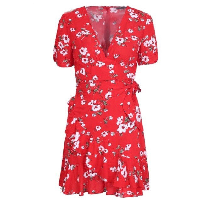 Ana red print dress