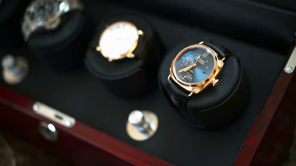closeup of luxury watches in a watch winder