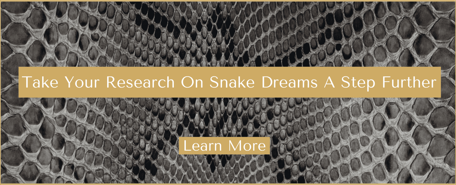 Learn more about the serpent dream meaning