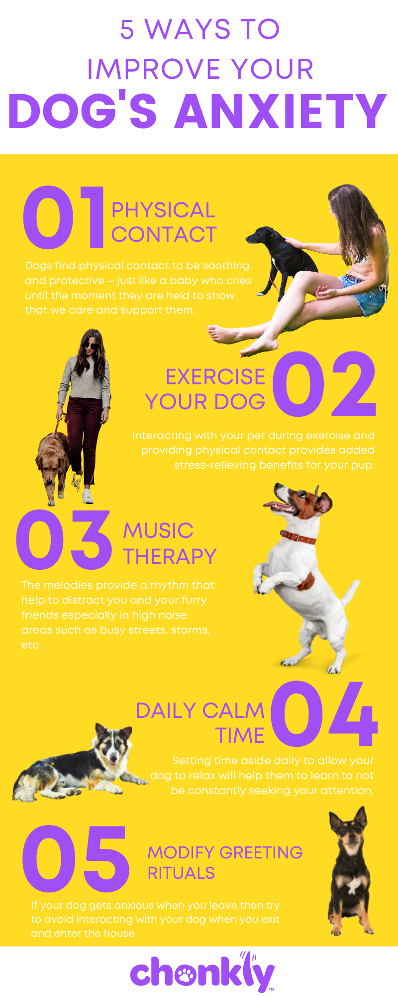 5 Ways to Improve Your Dog's Anxiety Infographic