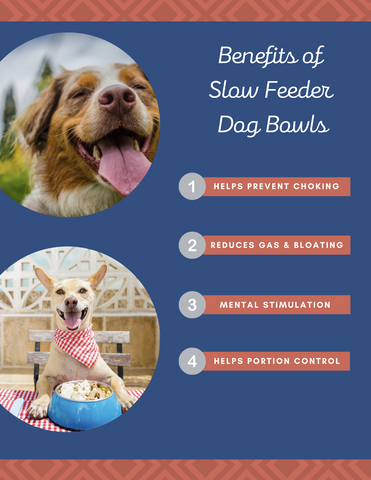 Benefits of slow feeder dog bowls infographic. 1) Helps prevent choking. 2) Reduces gas & bloating. 3) Mental stimulation. 4) Helps portion control. Brought to you by Chonkly.
