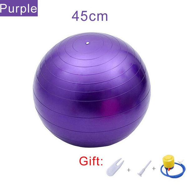 Sports Yoga Balls Pilates Fitness Gym Balance Fitball Massage Training Workout Exercise Ball 55cm 65cm 75cm 95cm with Pump