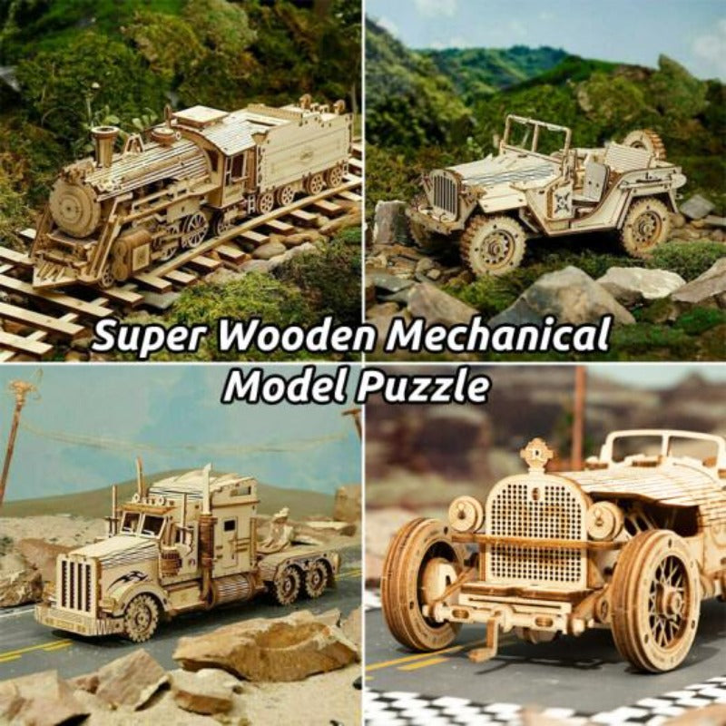 Super Wooden Mechanical Model Puzzle Set
