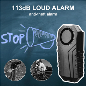 Anti-Theft Alarm