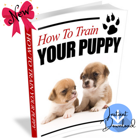 How To Train Your Puppy (19 Pages) - Digital Download