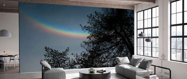 Afternoon Rainbow Wallpaper Photo Mural | PictureThisPrints