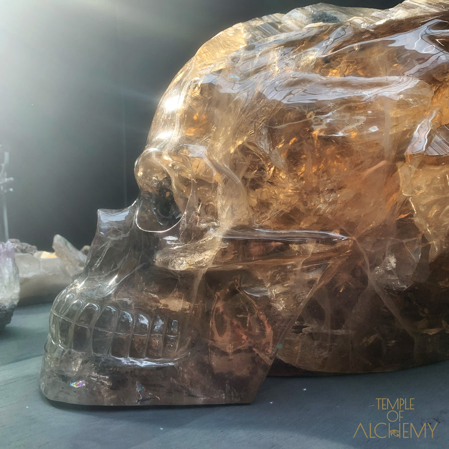 * RESERVED A.M * 56 KG Traveller Grand Master Skull * Smokey Citrine Elestial + Black Tourmaline