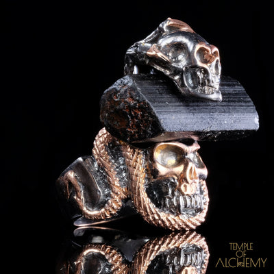 Crystal Skull Ring : Black Tourmaline - jewelry - Temple of Alchemy - 3