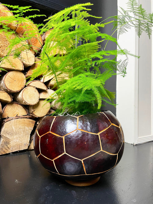Burgundy calabash plant pot with green fern on fireplace