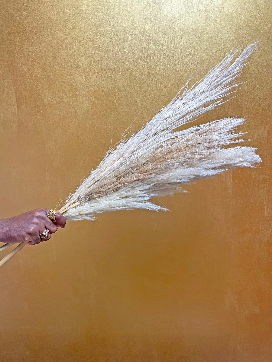 Pampas grass by Calabasas mixed bunch against gold wall