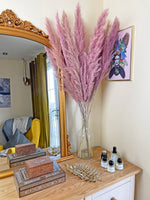 Lilac and pink pampas grass in glass vase on dressing table by Calabasas