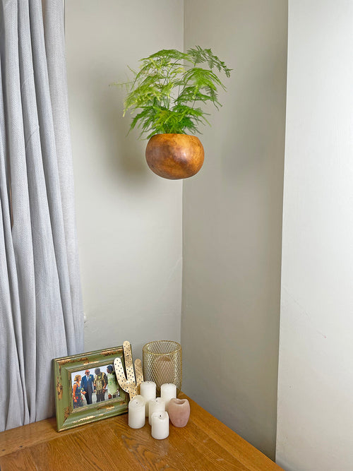 Hanging natural calabash basket