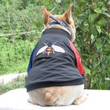 Cute Black Bomber Jacket Coat with Bee Detail and contrasting sleeves for Small Dog or Puppy.  With zip fastening.