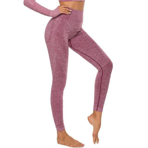 High Waist Seamless Leggings - Physical Solutions