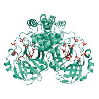 Structural model of 3CL-Mpro Protein, unmodified