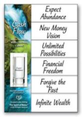 Cash Flow Mini